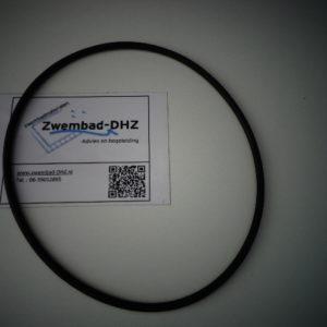 Kripsol O-ring voor transparante zandfilterdeksel-0