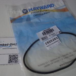 O-ring voor Hayward zandfilter (GM600-F)-0