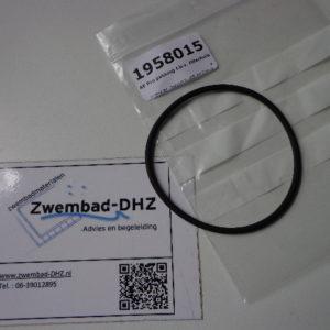 Aqua easy PRO pakking voor filterhuis-0